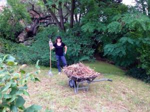 jardinier-tasmanie