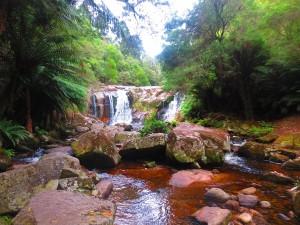 halls-falls-tasmania