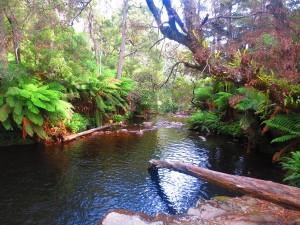rocks-pool-tasmania