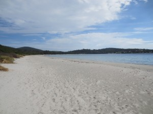 white-beach-tasmania