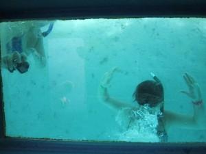 bateau-fond-de-verre-maurice
