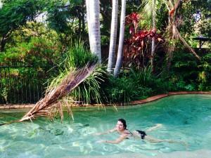 piscine-wwoofing-mullumbimby