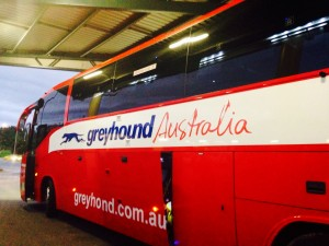 bus-greyhound-trip-sydney-australie